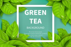 Green tea leaves vector nature background Product Image 1