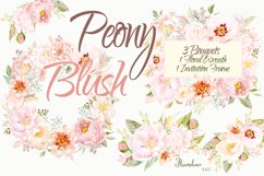 Watercolor Peony Blush Clipart Bundle Product Image 6