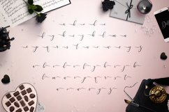 Web Font Dolly Script Product Image 4