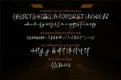 Web Font Ellamy - Script Brush Font Product Image 2