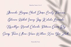 Monnolitic Casual Signature Font Product Image 9