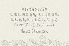 Zaniola Lavolce Modern Callihgraphy Font Product Image 6