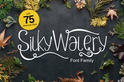 Silkywalery Family font Product Image 1
