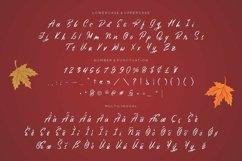 Web Font Maria Nata Script Font Product Image 3