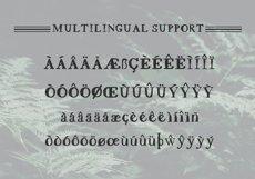 Scrawny Eve - Hand Lettered Serif Typeface Product Image 3