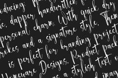 Themify Brush Font Product Image 3