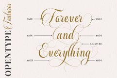 Beautiful Roses Duo Font Product Image 6
