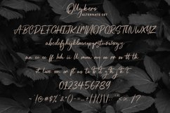 Ollykers Brush Script Font Product Image 4