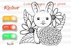Sweet Bunny - Cut File and Coloring Page Product Image 1