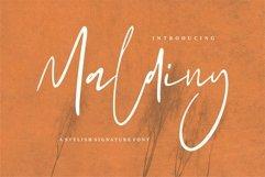 Web Font Maldiny - A Stylish Signature Font Product Image 1