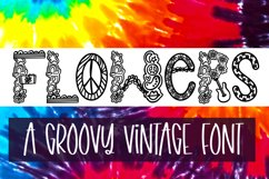 Far Out - A Groovy Retro Word Art Font Product Image 2