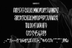 Web Font TheBlackout - Cinematic Display Font Product Image 4