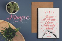 Mimosa Script Product Image 3