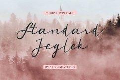 Web Font - Standard Jeglek - Script Typeface Product Image 1