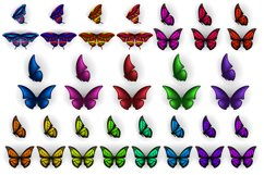 Set of colorful butterflies clipart Product Image 2
