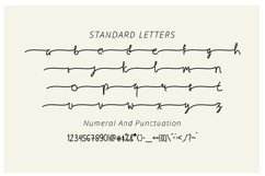 Natuna - Modern Calligraphy Product Image 6