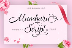 Modern Script Font Budle Product Image 5