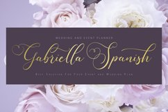 Sugarberry | Modern Script Font Product Image 5