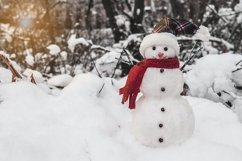 Snowman with cap and scarf Product Image 1