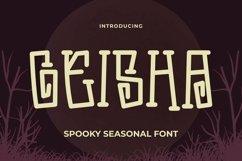 Web Font Geisha Font Product Image 1