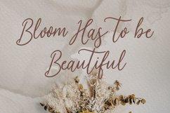 Oliviars Beauty Script Font Product Image 6