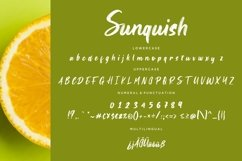 Sunquish Stylish Handbrush Product Image 3