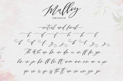 Malloy Product Image 2