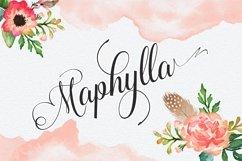 Maphylla Product Image 1