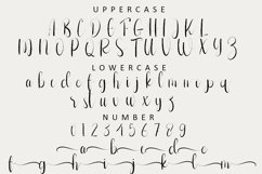 Shooting - Calligraphy Font Product Image 2