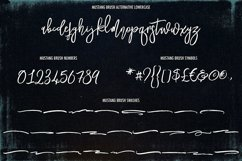 Mustang Brush Font Product Image 4
