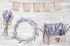 Lavender Watercolor Set Clipart Product Image 6