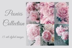 Pink Peonies Collection Product Image 1