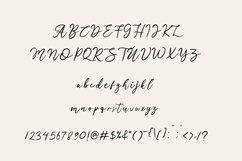 Manira Script Product Image 6