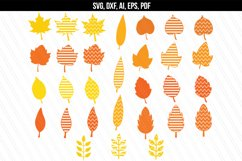 Autumn Fall leaves svg / dxf cutting files Product Image 1