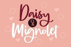 Web Font Burgundy - Beautiful Script Font Product Image 2