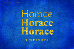 HORACE, A Strong Serif Type Product Image 2