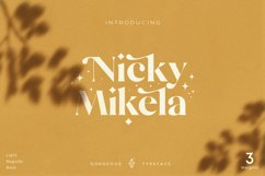 Mikela - Three Weights Gorgeous Typefaces Product Image 1
