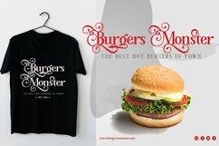 Megona   Modern Serif Product Image 4
