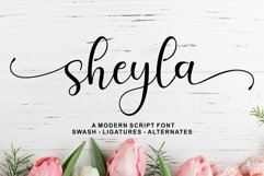 Sheyla Modern Script Product Image 1