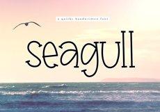 Seagull - A Fun Handwritten Font Product Image 1