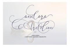 andora rdelion Product Image 1