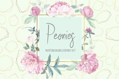 Peonies Clipart Watercolor Set Product Image 1