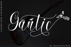 Gantic Product Image 1