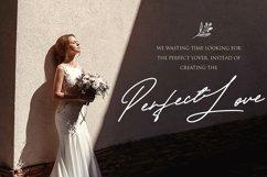 Taniya Relly - Luxury Signature Font Product Image 5