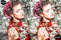 Red Blogger Photoshop Actions And ACR Presets Product Image 2