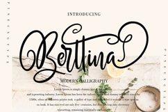Berttina Product Image 1