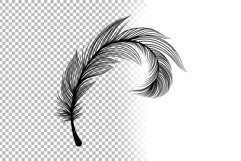 Black Feathers Stencil Boho Line Art Design Elements Product Image 6