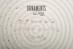 Web Font Ornaments Ding Product Image 5