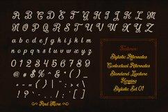 Fadli Script Product Image 4