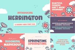 The Floral Craft Font Bundle Product Image 4